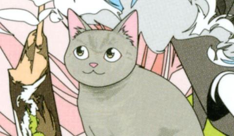 人間より猫が多い事務所!? 噂の最強の弁護士を君は知っているか!