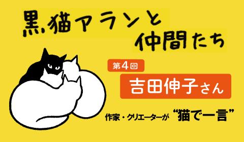 #猫写真 「3度の飯より猫が好き!」